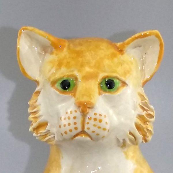 ginger cat on wheels